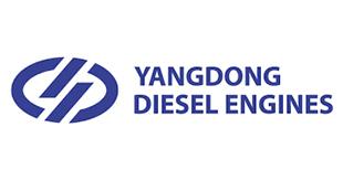 yang dong diesel engines (yd)